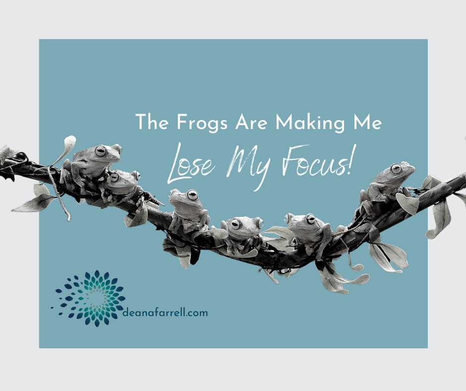 deanafarrell.com-the-frogs-are-making-me-lose-my-focus